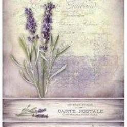 Papel Decoupage r982 lavender