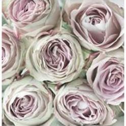 Servilleta Decoupage pink rose