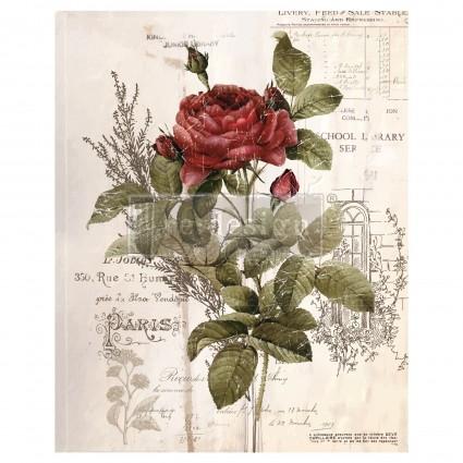 Botanical Rose 66,04 x 81,28cm  transfer Deco