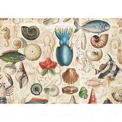 OCEAN LIFE 70X100 BOMOART