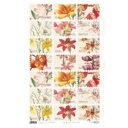 Papel de Arroz 54x33 Flowers & Cards