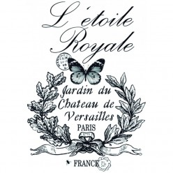 TRANSFER LETOILE ROYALE