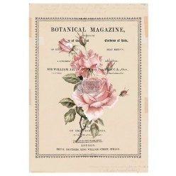 Beautiful Botanist re.design Decor Transfers