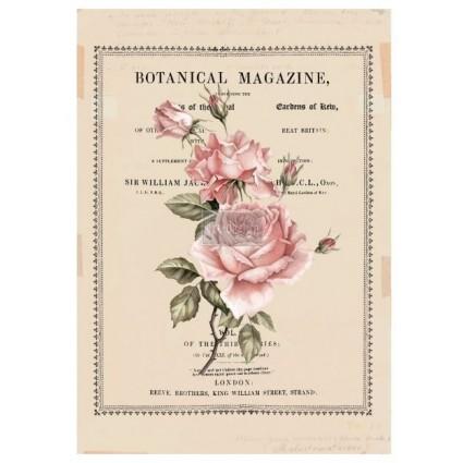 Beautiful Botanist re.design Decor Transfers