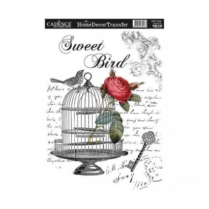 TRANSFER SWEET BIRD