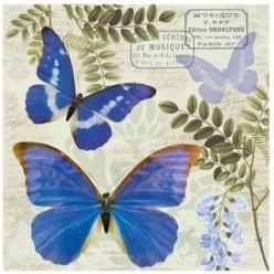 Servilleta BLUE MORPHO 33X33CM